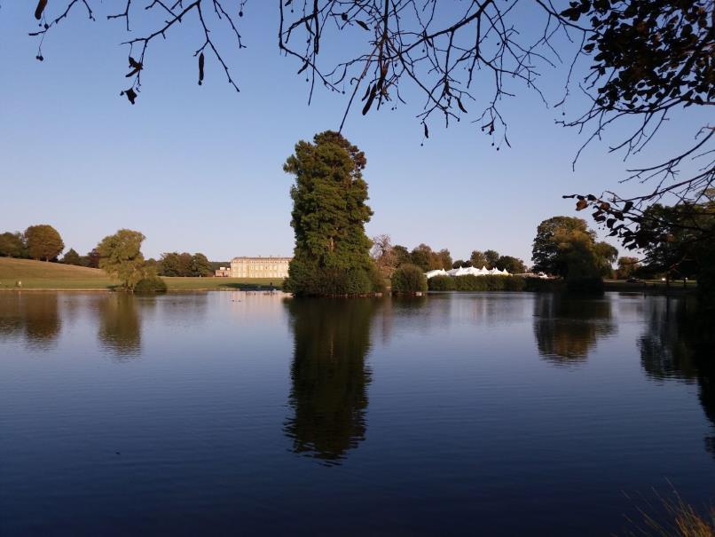 Petworth Park in West Sussex