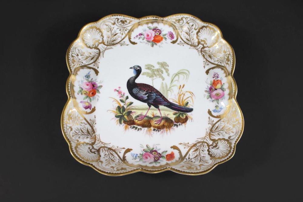 Chelsea porcelain botanical dish by Hans Sloane
